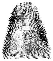Huella digital del pulgar derecho de Francisca Rojas, primera persona condenada por homicidio a partir de sus huellas dactilares.